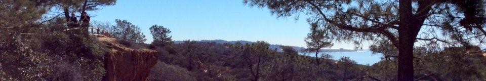 Torrey Pines State Natural Reserve ®