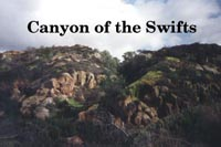 Canyon of the Swifts