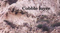 Cobble layer