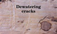Dewatering cracks in Torrey sandstone