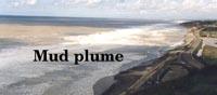 Mud plume nearshore
