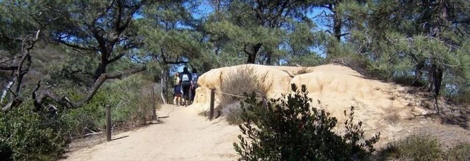 Guy Fleming Trail